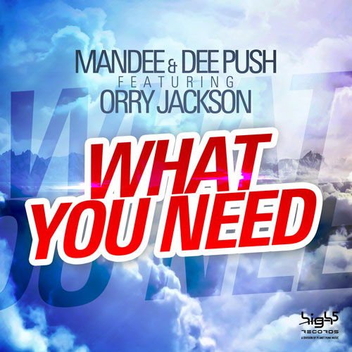 Mandee & Dee Push ft. Orry Jackson - What you need