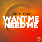 Perfect Pitch – Want Me Need Me