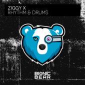 Ziggy X – Rhythm & Drums