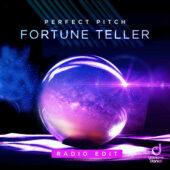 Perfect Pitch – Fortune Teller (Radio Edit)